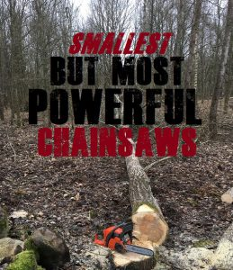 Top Rated Small Chainsaws