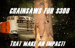 What Are The Best Chainsaws For Under $300 Dollars