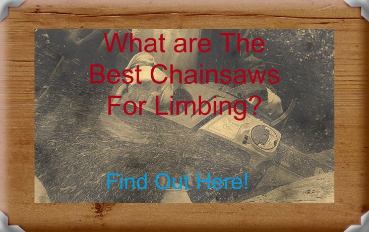 The Best Chainsaws For Delimbing
