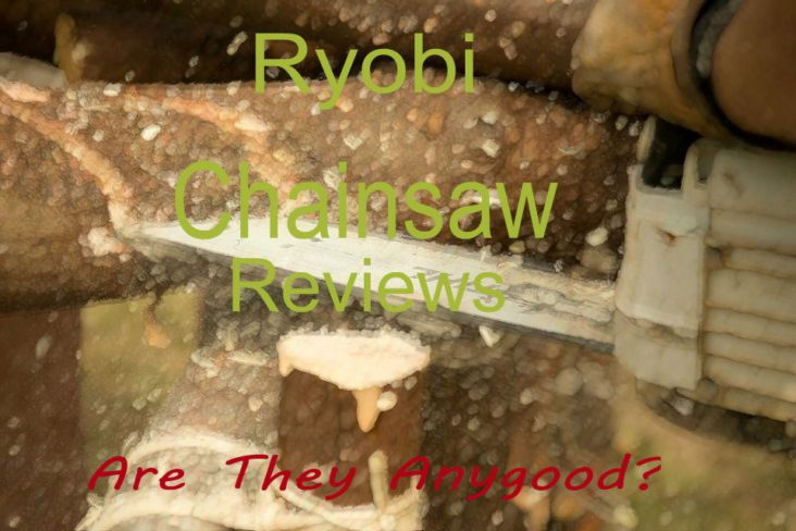 Ryobi Chainsaw Reviews