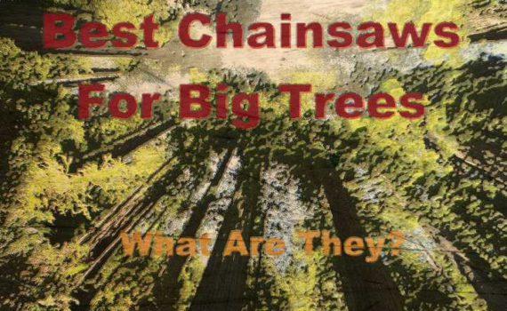 Top Rated Chainsaws For Large Trees