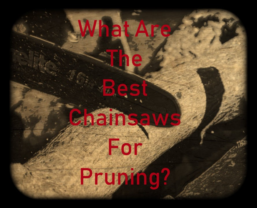 Top Rated Chainsaws For Pruning