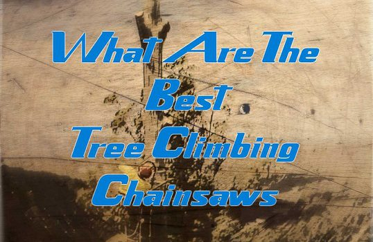 Top Rated Tree Climbing Chainsaws
